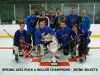 SPRING 2021 A PUCK CHAMPS - ZRINK SELECTS